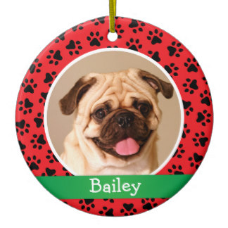 personalized_puppy_dog_pet_photo_ornament-rb4c5885715f54e17a995d66afa0be4e7_x7s2y_8byvr_324.jpg